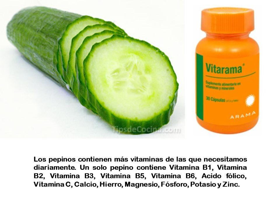 Los pepinos contienen más vitaminas de las que necesitamos diariamente