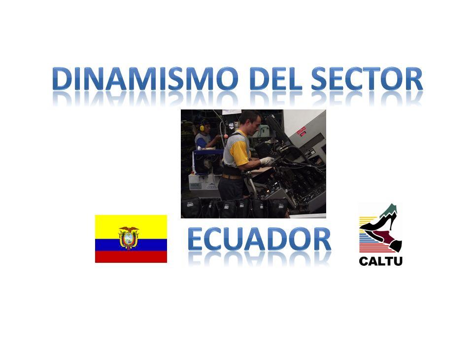 DINAMISMO DEL SECTOR Ecuador