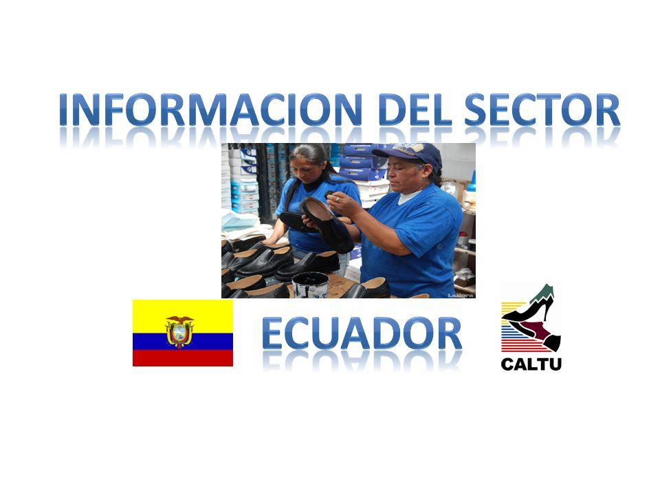 INFORMACION DEL SECTOR