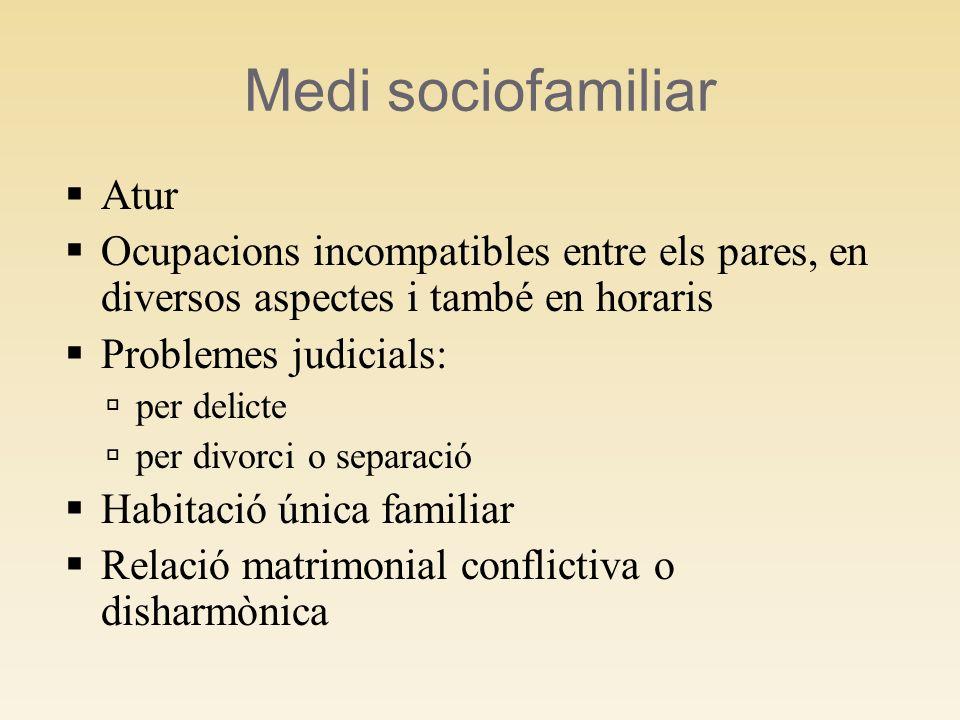 Medi sociofamiliar Atur