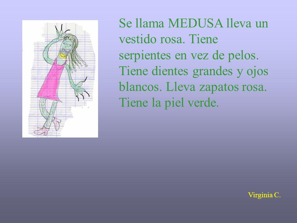Se llama MEDUSA lleva un vestido rosa. Tiene serpientes en vez de pelos. Tiene dientes grandes y ojos blancos. Lleva zapatos rosa. Tiene la piel verde.