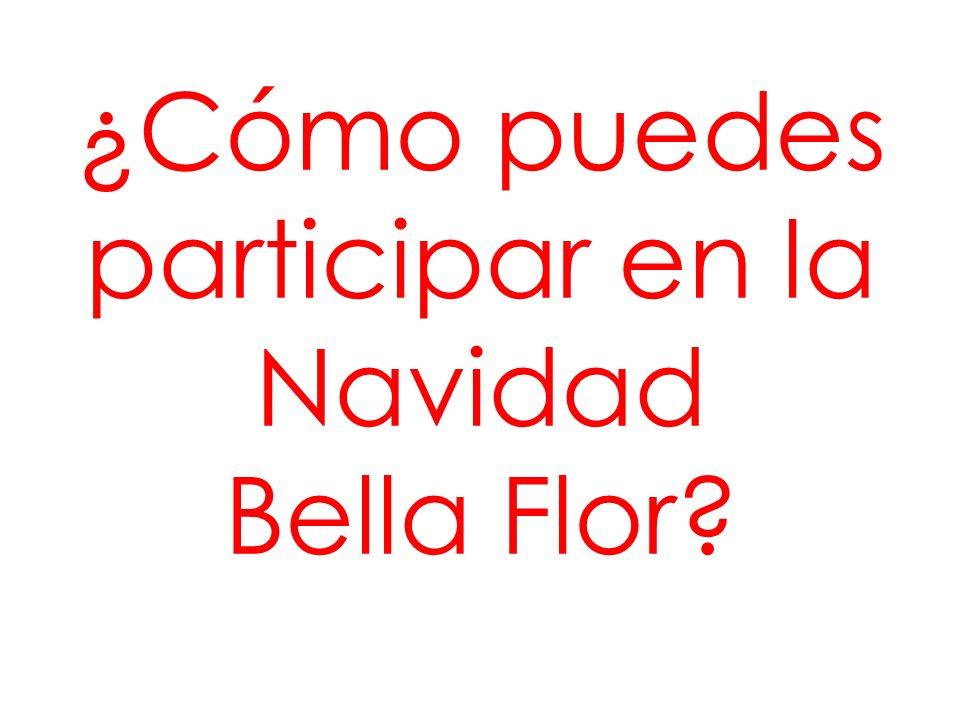 ¿Cómo puedes participar en la Navidad Bella Flor