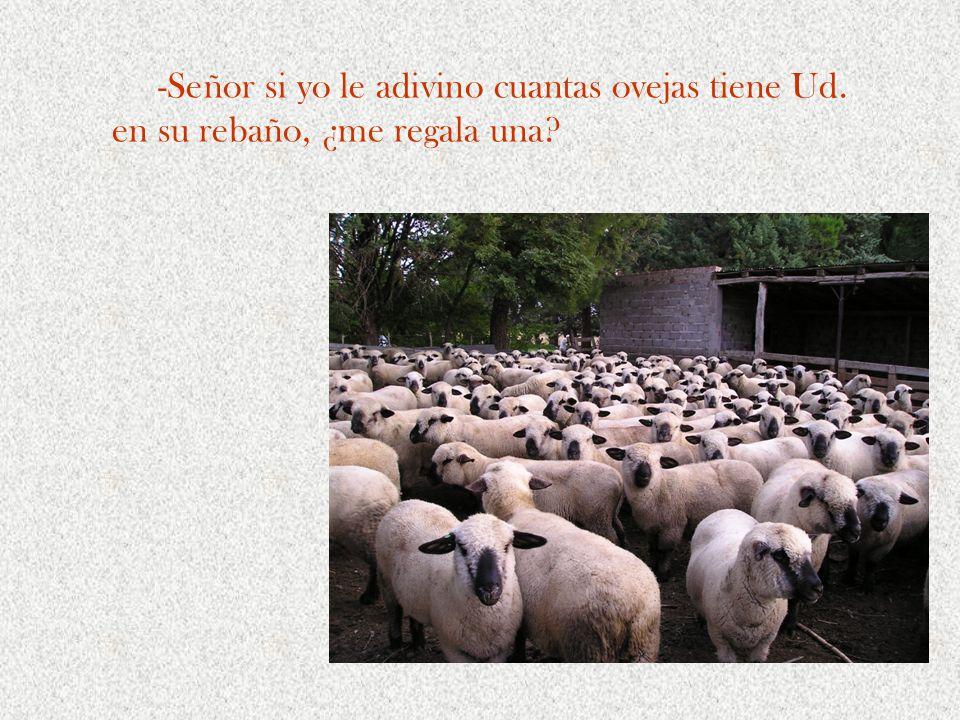 -Señor si yo le adivino cuantas ovejas tiene Ud