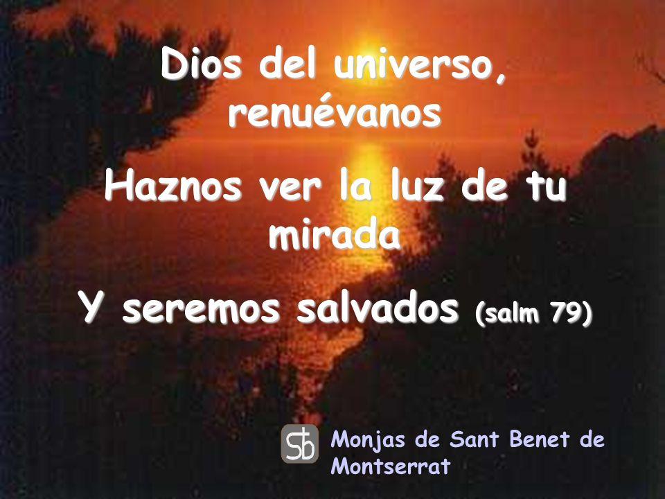 Dios del universo, renuévanos Haznos ver la luz de tu mirada