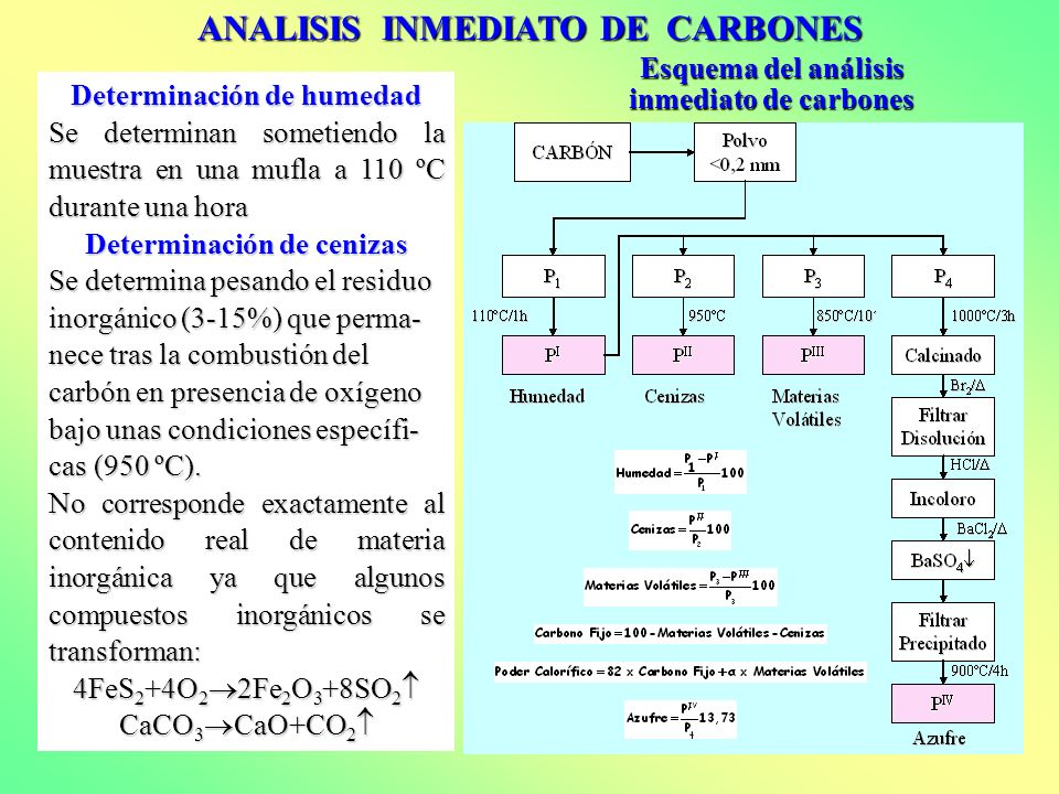 ANALISIS INMEDIATO DE CARBONES