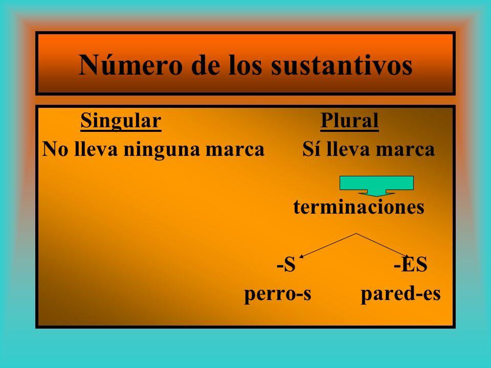 Número de los sustantivos