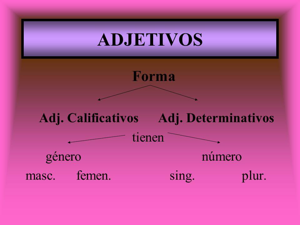 ADJETIVOS Forma Adj. Calificativos Adj. Determinativos tienen