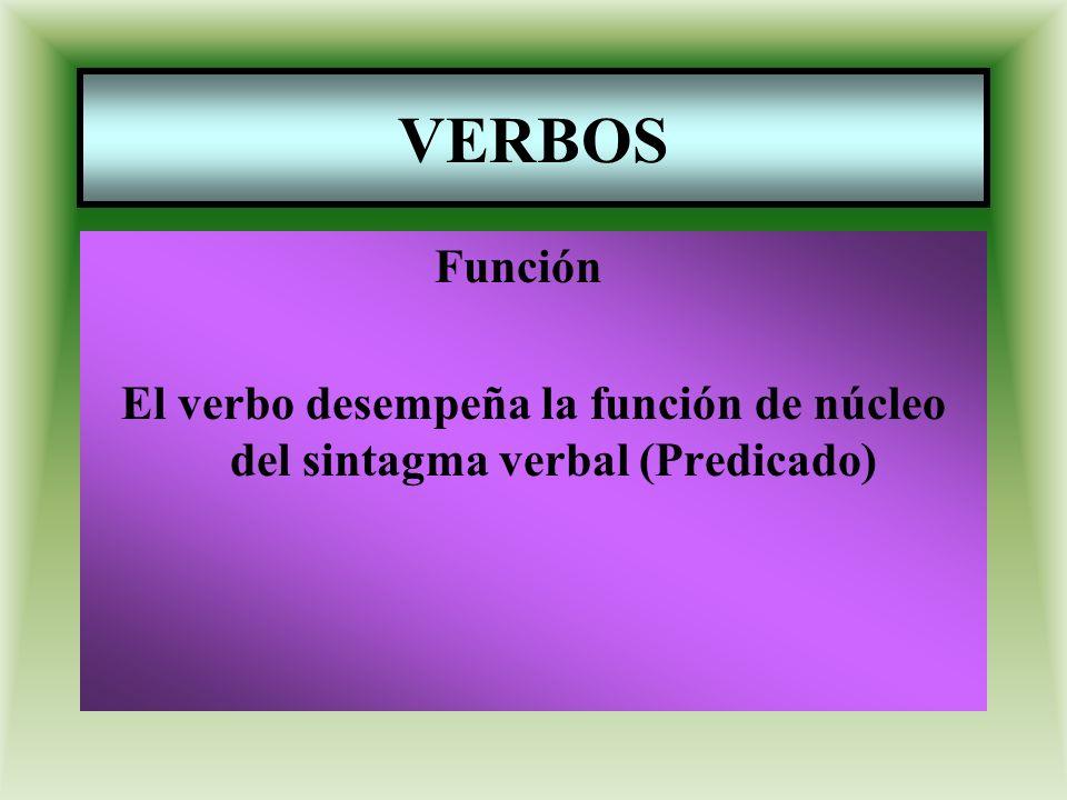 VERBOS Función El verbo desempeña la función de núcleo del sintagma verbal (Predicado)