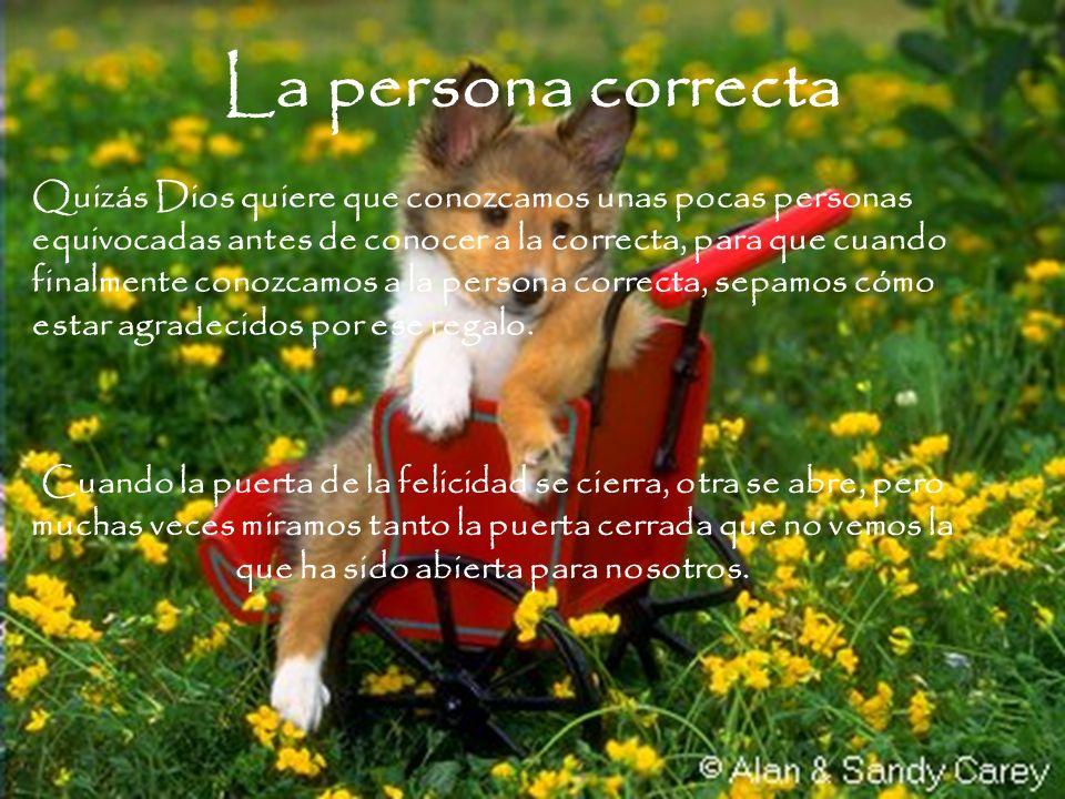 La persona correcta