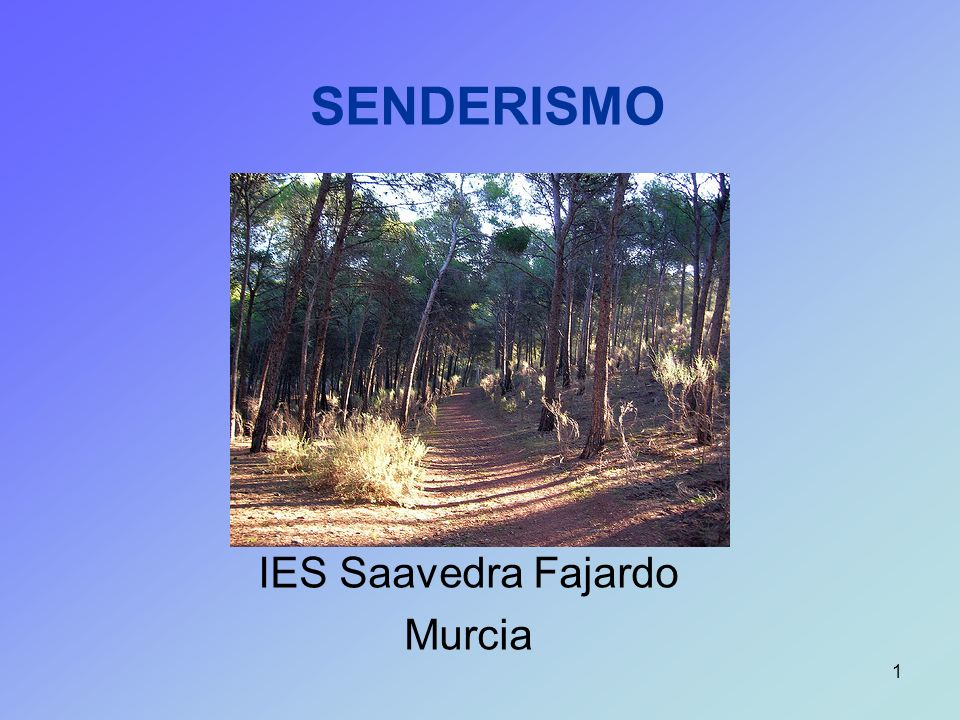 IES Saavedra Fajardo Murcia