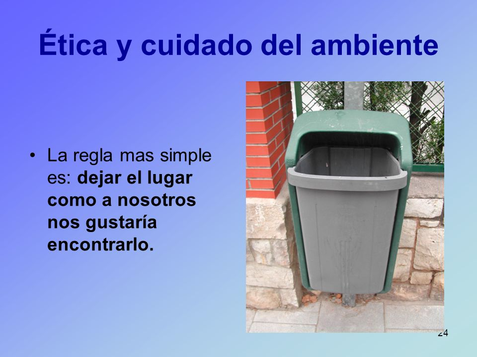 Ética y cuidado del ambiente