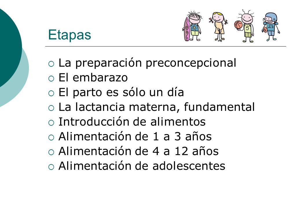 Etapas La preparación preconcepcional El embarazo