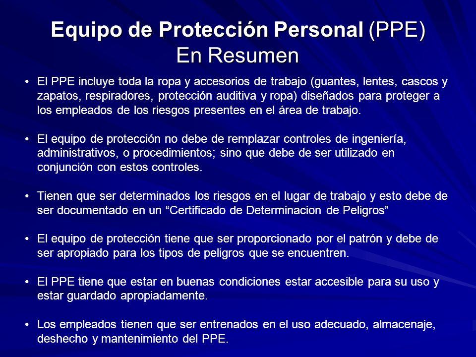 Equipo de Protección Personal (PPE) En Resumen