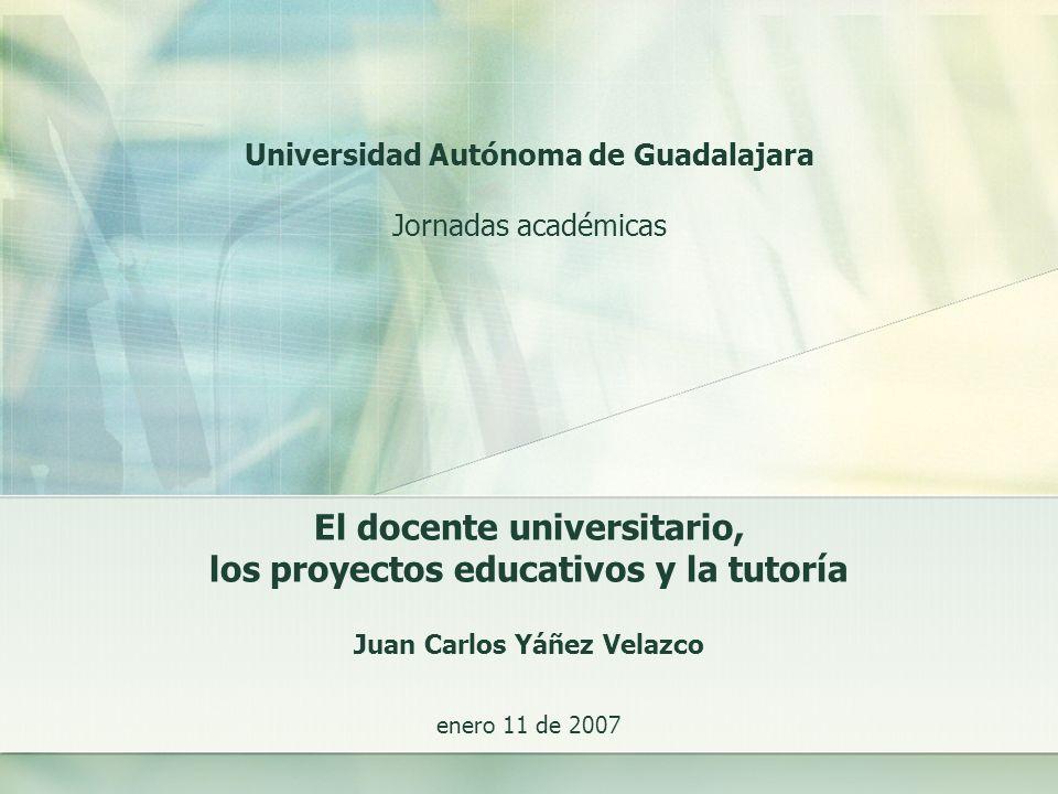 El docente universitario, los proyectos educativos y la tutoría