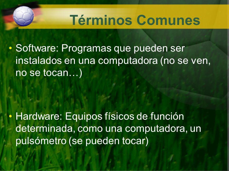 Términos Comunes Software: Programas que pueden ser instalados en una computadora (no se ven, no se tocan…)