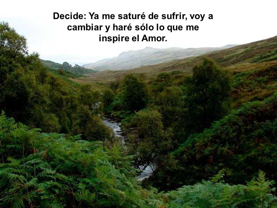 Decide: Ya me saturé de sufrir, voy a cambiar y haré sólo lo que me inspire el Amor.