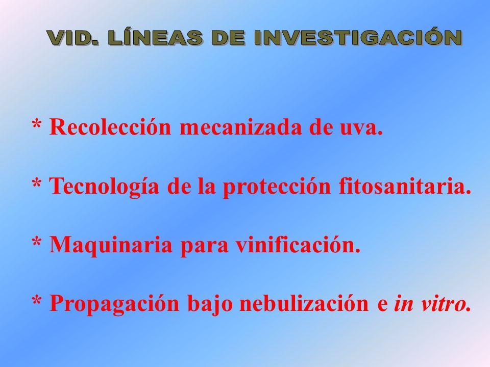 VID. LÍNEAS DE INVESTIGACIÓN
