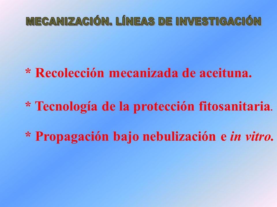 MECANIZACIÓN. LÍNEAS DE INVESTIGACIÓN