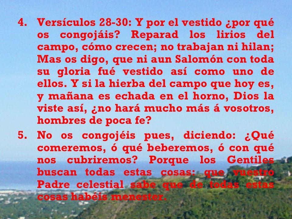 Versículos 28-30: Y por el vestido ¿por qué os congojáis