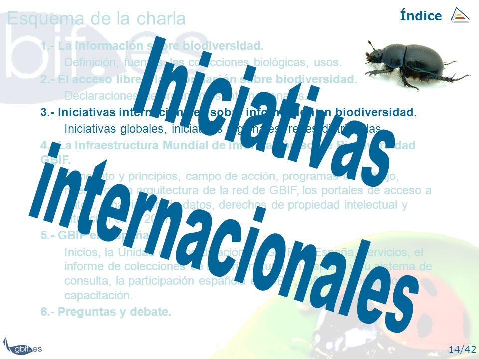 Iniciativas internacionales Esquema de la charla Índice