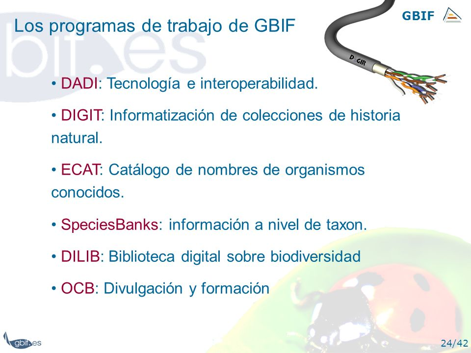 Los programas de trabajo de GBIF