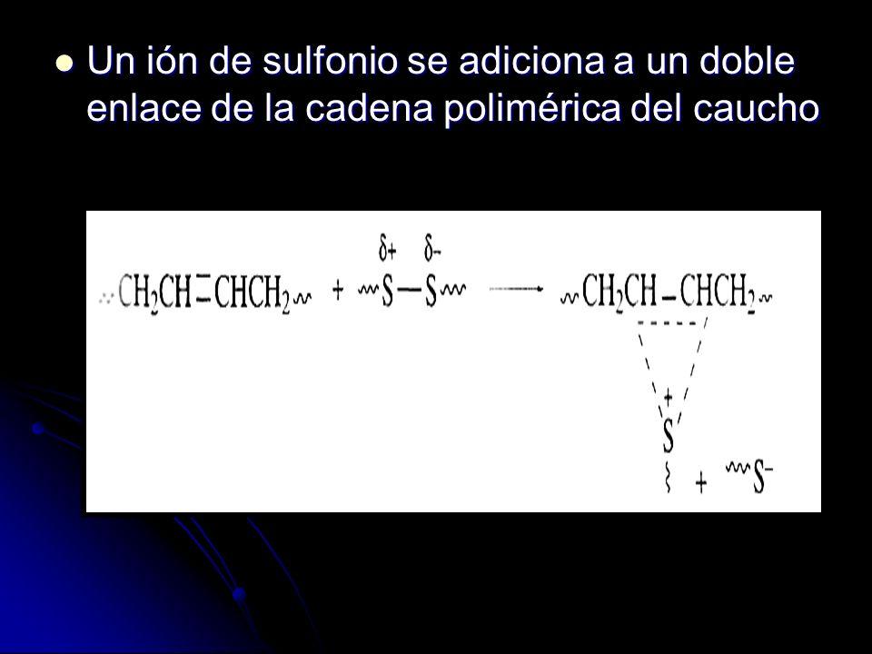 Un ión de sulfonio se adiciona a un doble enlace de la cadena polimérica del caucho