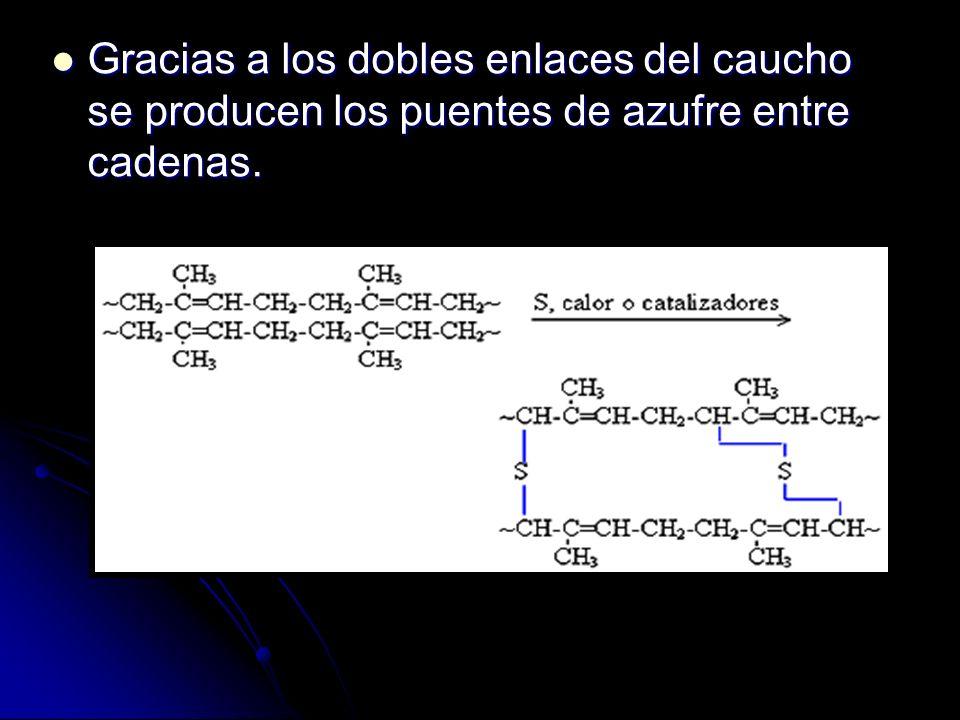 Gracias a los dobles enlaces del caucho se producen los puentes de azufre entre cadenas.