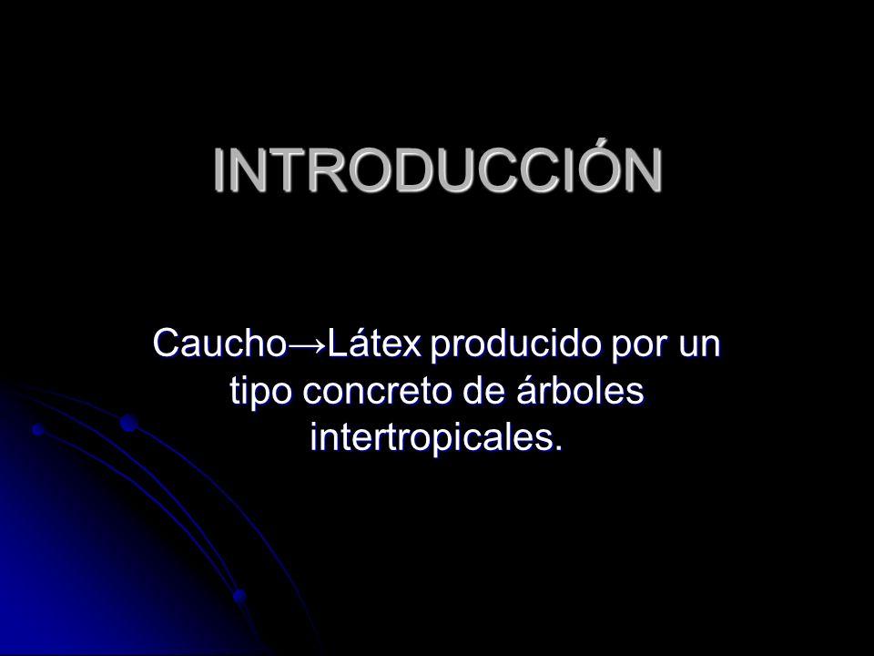 INTRODUCCIÓN Caucho→Látex producido por un tipo concreto de árboles intertropicales.