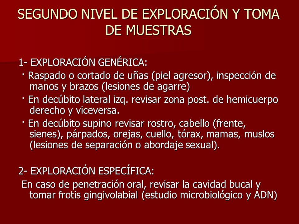 SEGUNDO NIVEL DE EXPLORACIÓN Y TOMA DE MUESTRAS