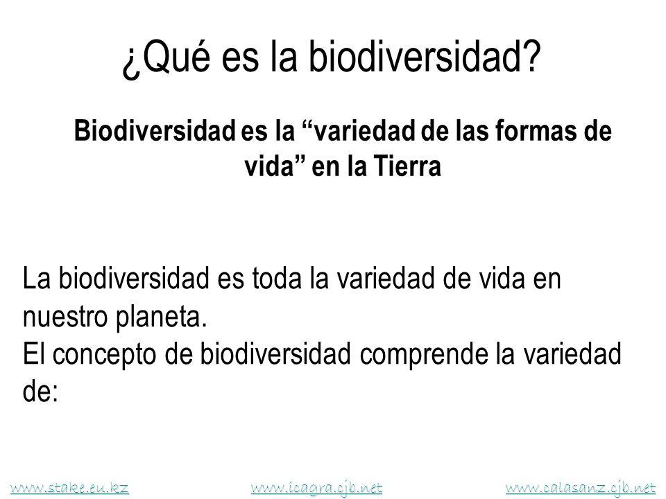 Biodiversidad es la variedad de las formas de vida en la Tierra