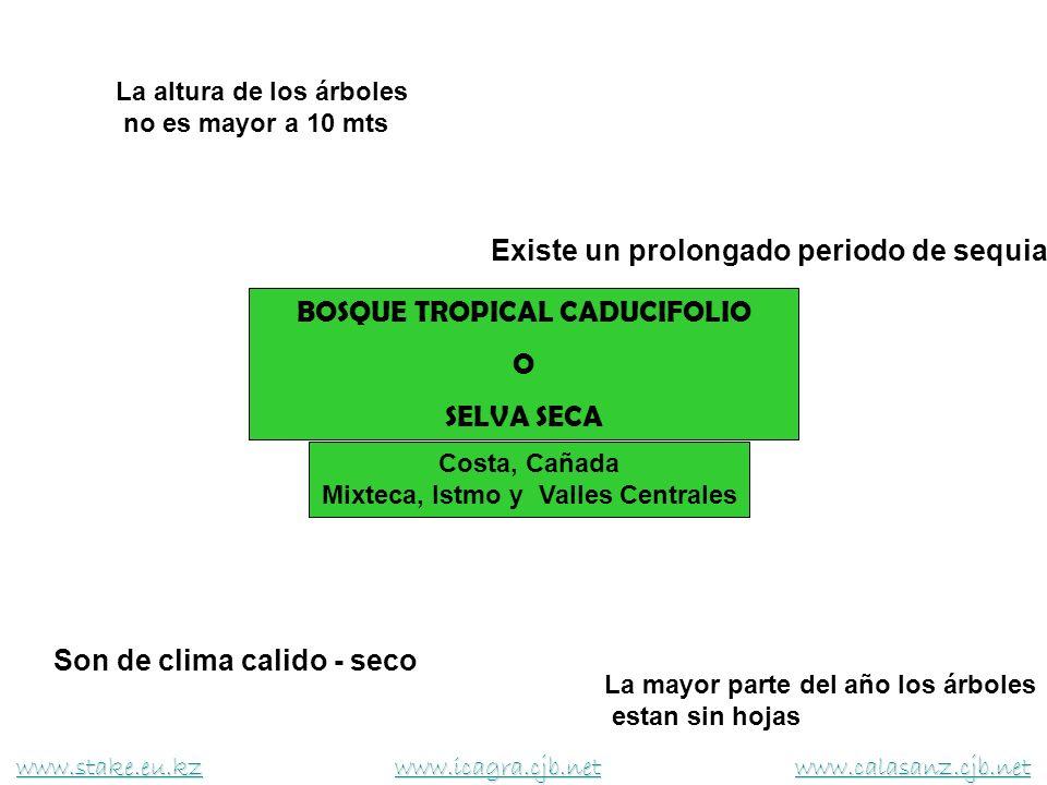 BOSQUE TROPICAL CADUCIFOLIO Mixteca, Istmo y Valles Centrales
