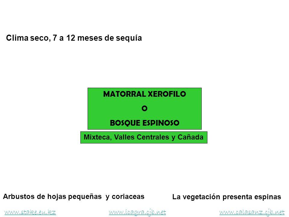 Mixteca, Valles Centrales y Cañada