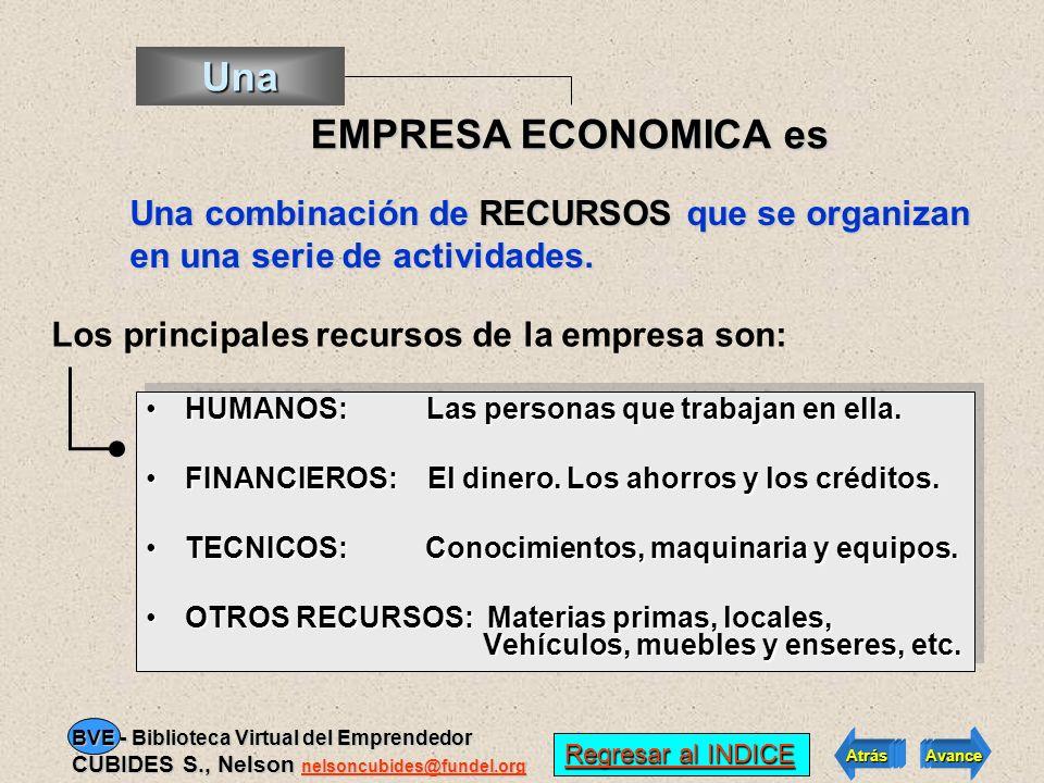 Los principales recursos de la empresa son: