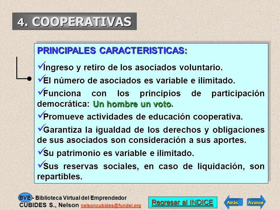 4. COOPERATIVAS PRINCIPALES CARACTERISTICAS: