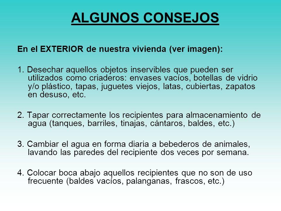 ALGUNOS CONSEJOS En el EXTERIOR de nuestra vivienda (ver imagen):