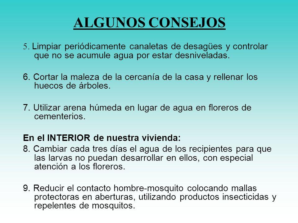 ALGUNOS CONSEJOS 5. Limpiar periódicamente canaletas de desagües y controlar que no se acumule agua por estar desniveladas.