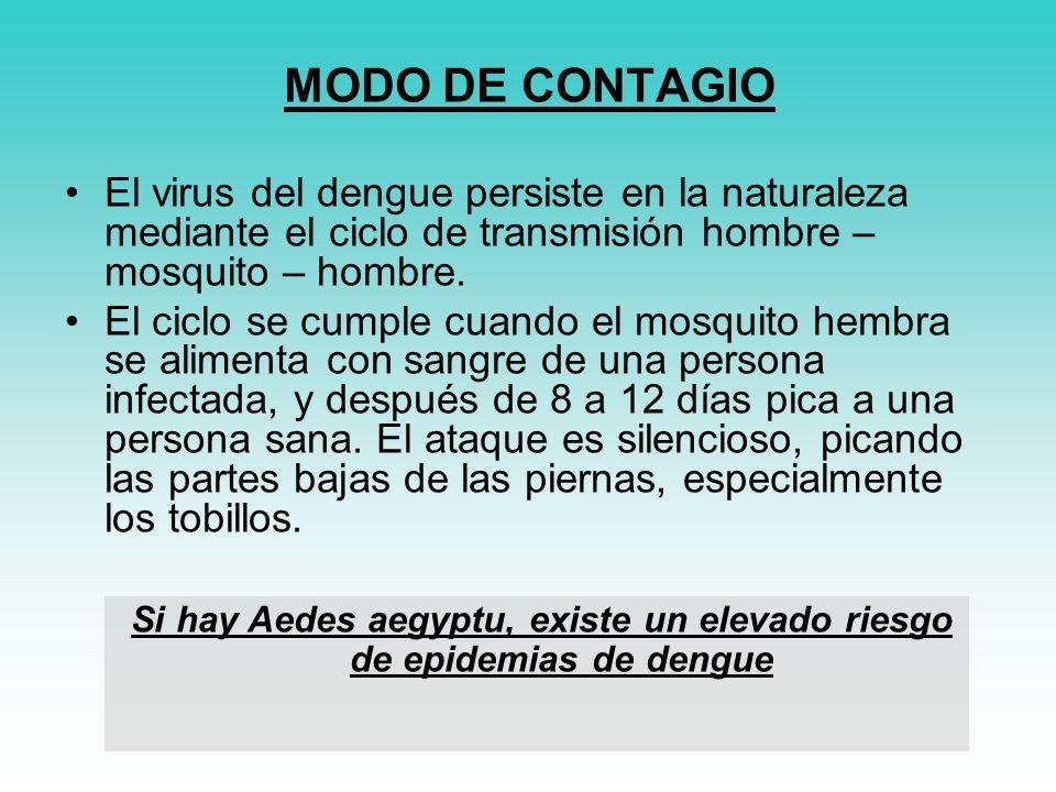 Si hay Aedes aegyptu, existe un elevado riesgo de epidemias de dengue