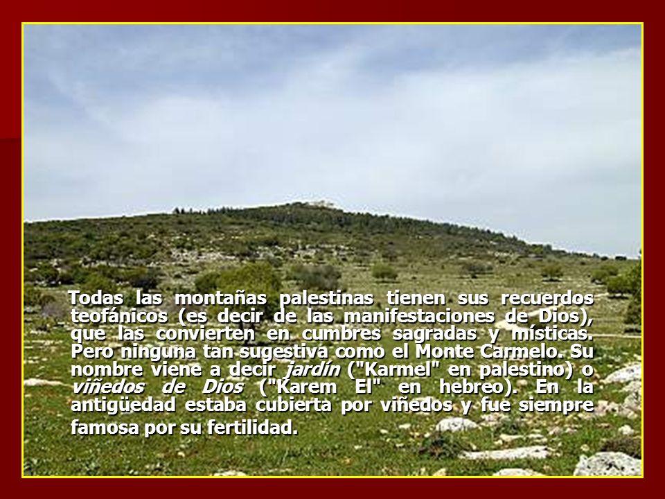 Todas las montañas palestinas tienen sus recuerdos teofánicos (es decir de las manifestaciones de Dios), que las convierten en cumbres sagradas y místicas.