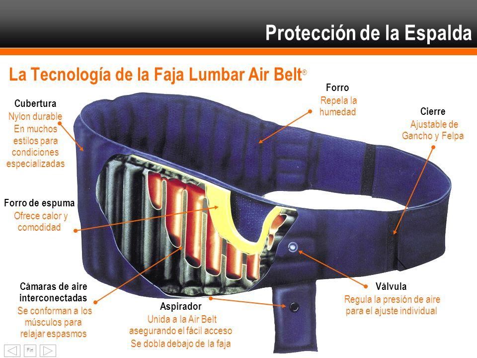 Protección de la Espalda