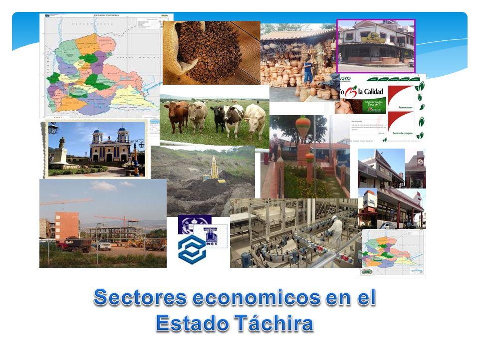 Sectores economicos en el