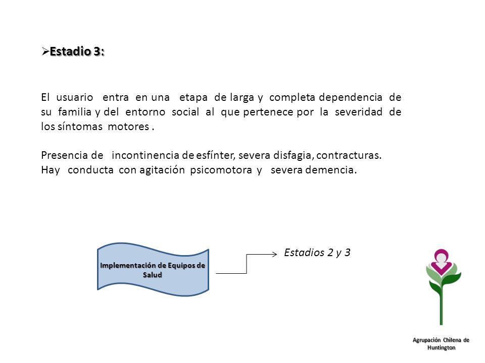 Implementación de Equipos de Salud Agrupación Chilena de Huntington