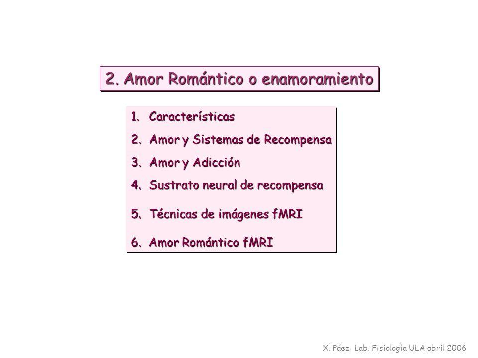 2. Amor Romántico o enamoramiento