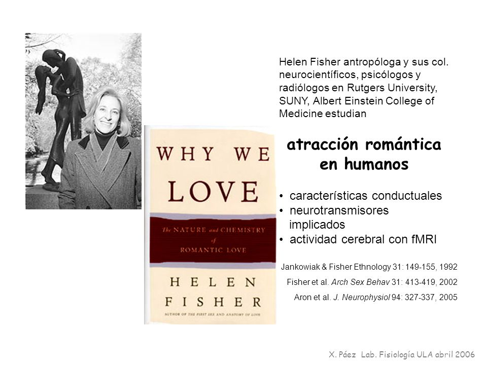 atracción romántica en humanos