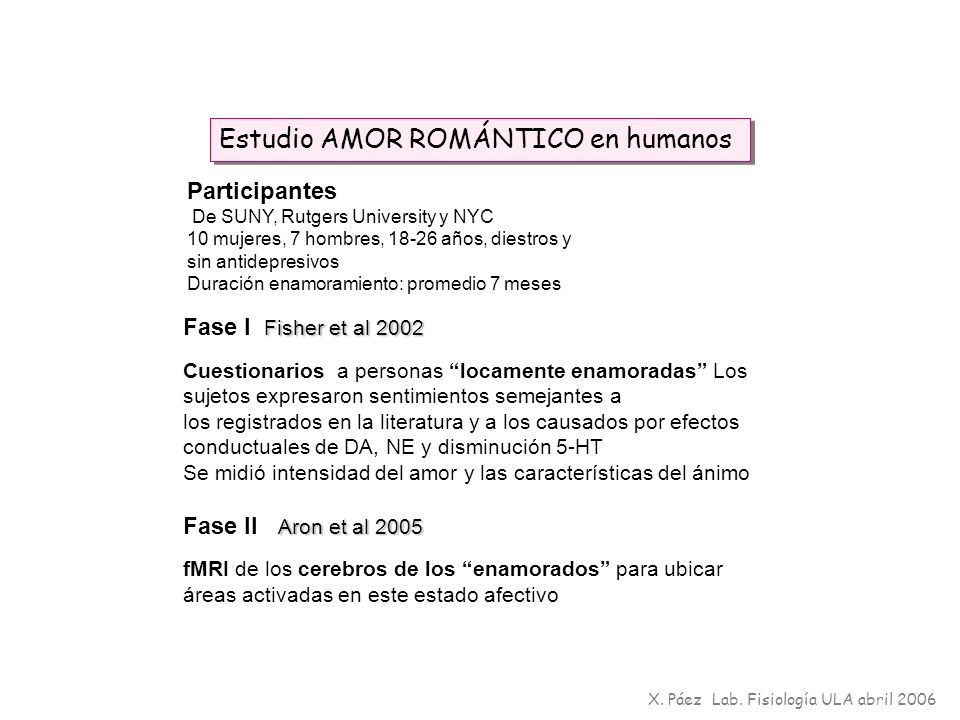 Estudio AMOR ROMÁNTICO en humanos