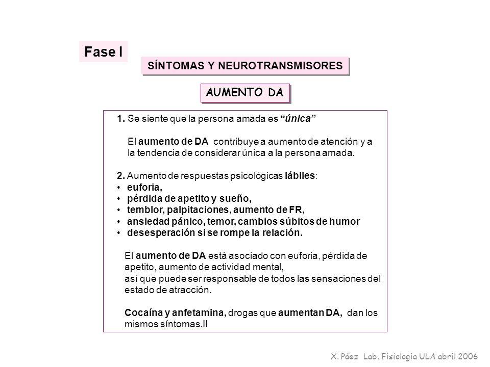 SÍNTOMAS Y NEUROTRANSMISORES