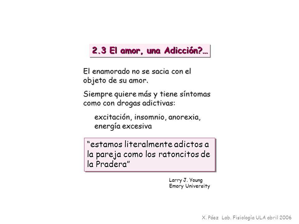2.3 El amor, una Adicción … El enamorado no se sacia con el objeto de su amor. Siempre quiere más y tiene síntomas como con drogas adictivas:
