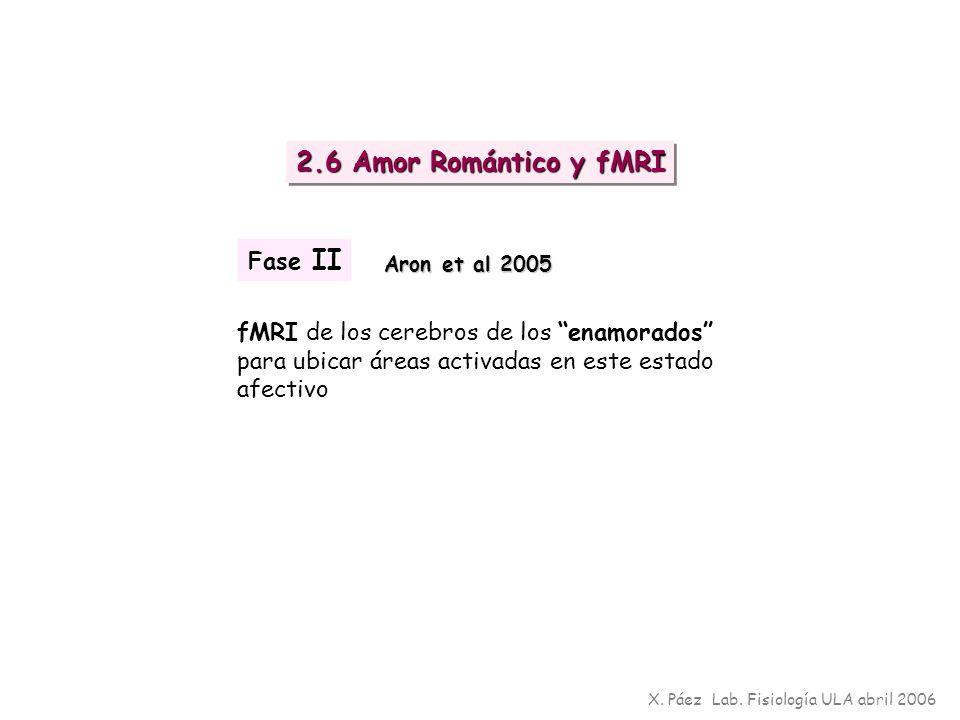 2.6 Amor Romántico y fMRI Fase II
