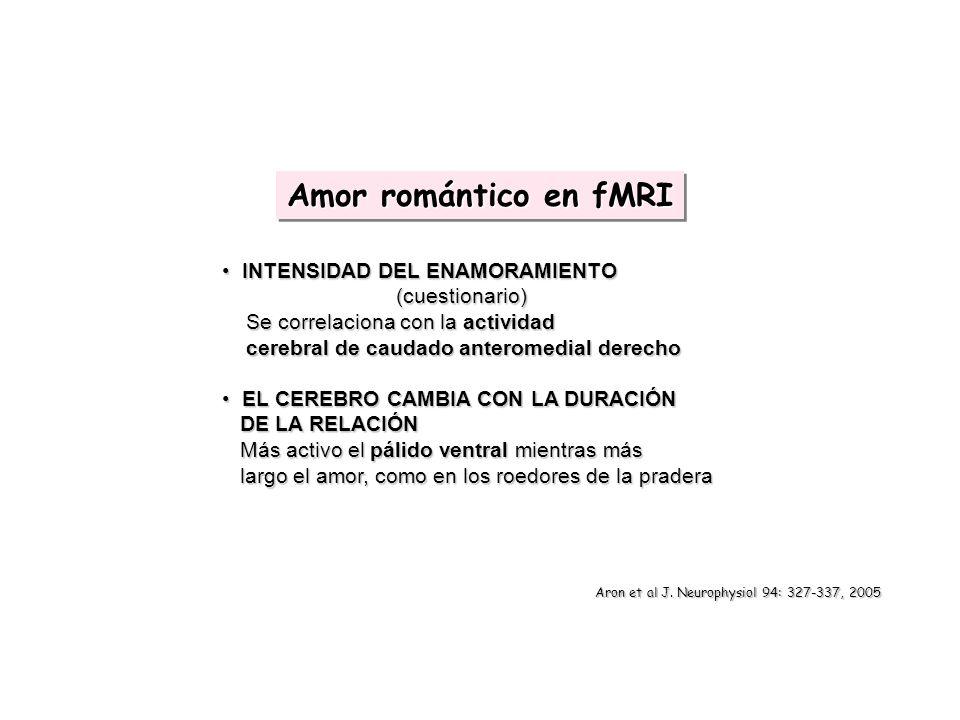 Amor romántico en fMRI INTENSIDAD DEL ENAMORAMIENTO (cuestionario)