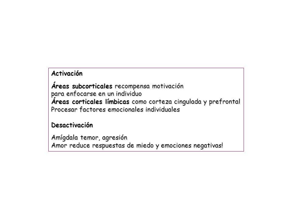 Activación Áreas subcorticales recompensa motivación. para enfocarse en un individuo. Áreas corticales límbicas como corteza cingulada y prefrontal.