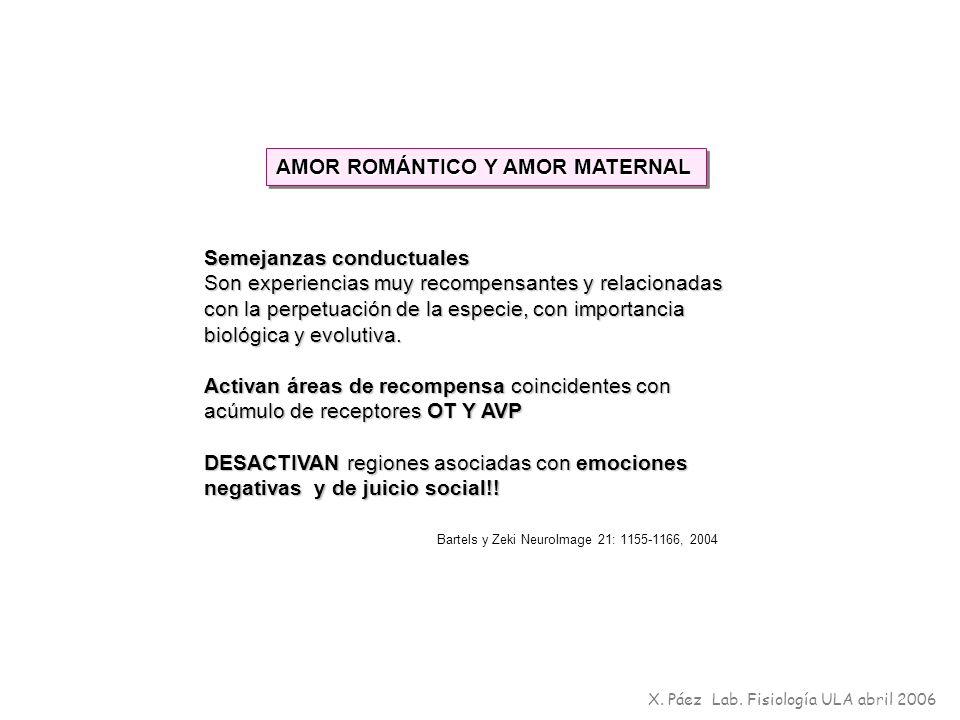 AMOR ROMÁNTICO Y AMOR MATERNAL